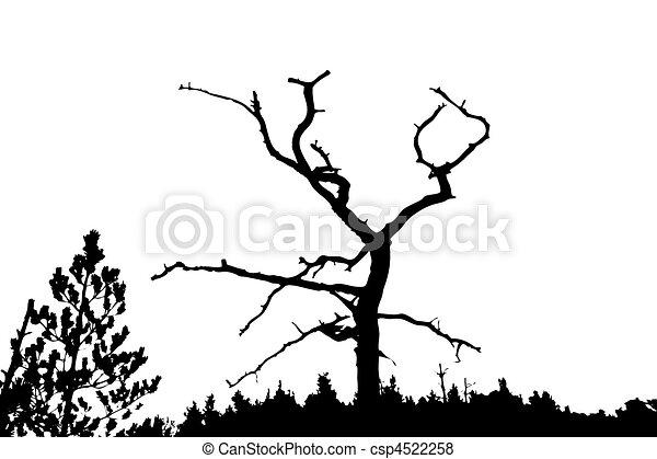 Arboles Secos Vectores Vector Silueta Seco árbol