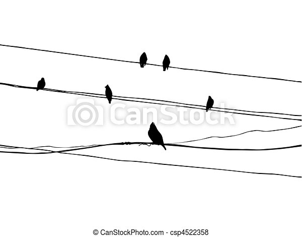 birds to waxwings on wire     - csp4522358