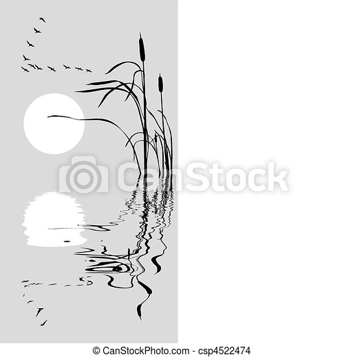 vector  drawing flock geese on bulrush    - csp4522474