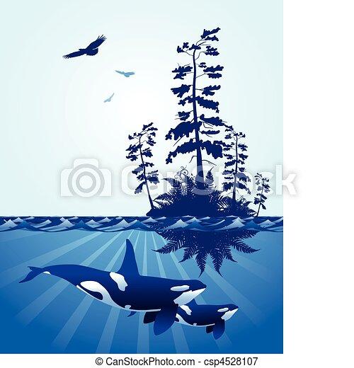 abstract Pacific Northwest ocean scene - csp4528107