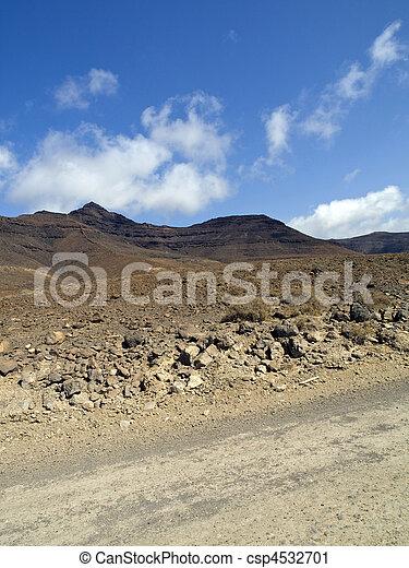 Desert Scenics - csp4532701