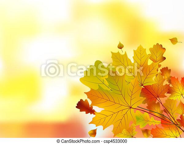 Autumn leaves, very shallow focus. - csp4533000