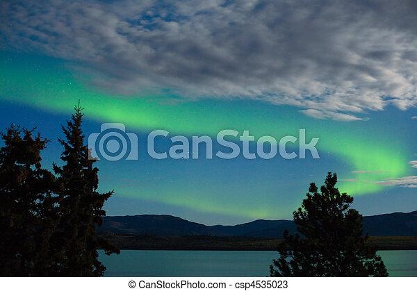 Aurora borealis (Northern lights) display - csp4535023
