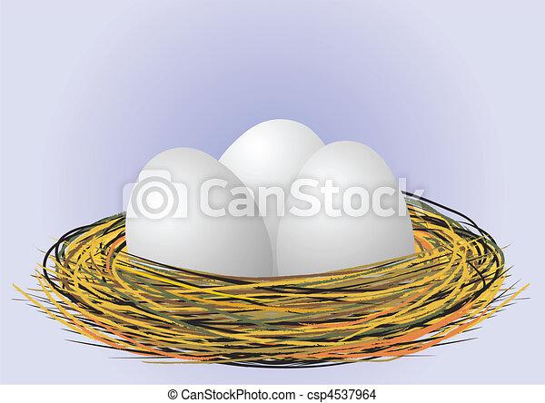 eggs in nest - vector - csp4537964