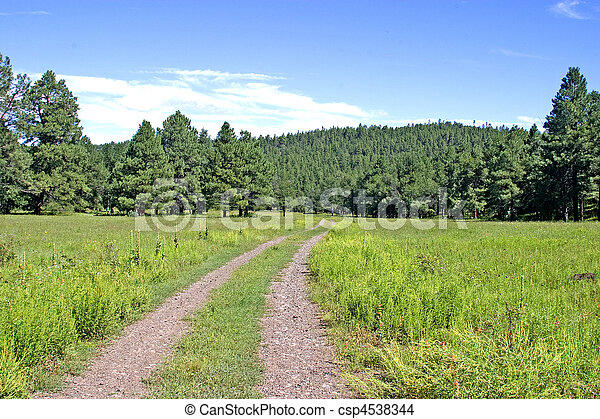 Road Less Traveled, Apache Res - csp4538344