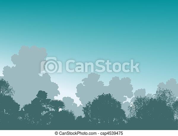 Woodland treetops - csp4539475