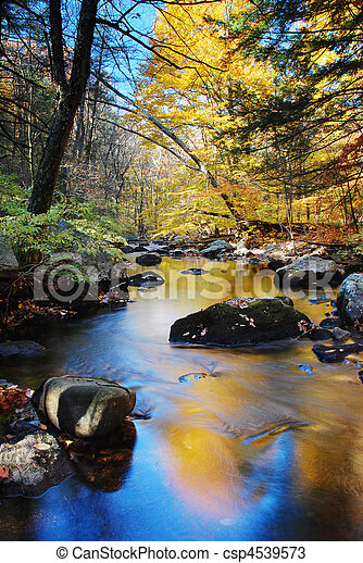Autumn creek foliage - csp4539573
