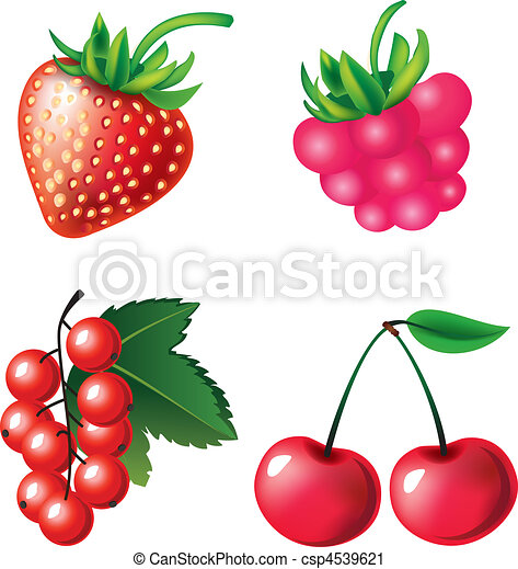 Set of berries objects - csp4539621