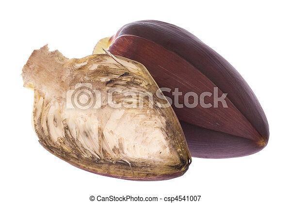 Edible Banana Flowers - csp4541007