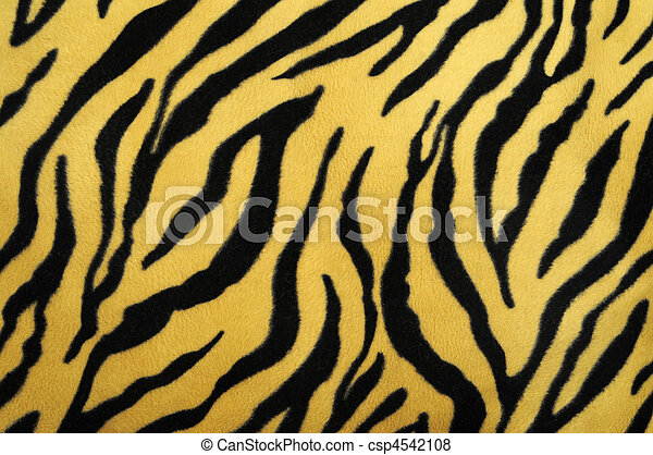 pattern of a tiger skin, excellent wildlife background - csp4542108