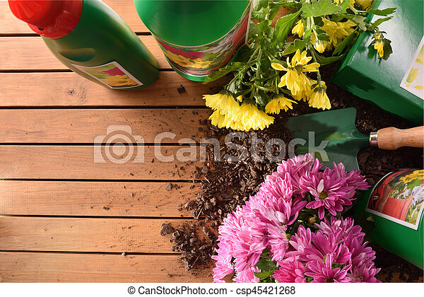 Bottles and containers of gardening products for the growth of plants on wood table. With flowers and plants of decoration. Top view. Horizontal composition