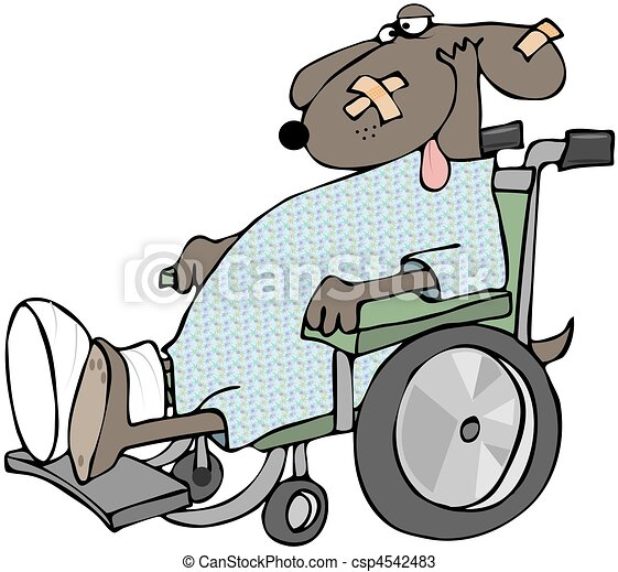 Sick Dog In A Wheelchair - csp4542483