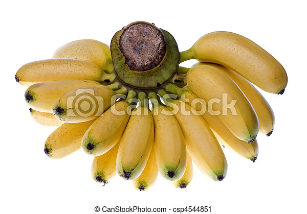 Yellow Bananas Isolated - csp4544851