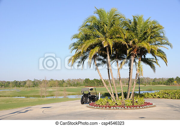 Golf Cart, Palm Trees and Florida Hotel Resort - csp4546323
