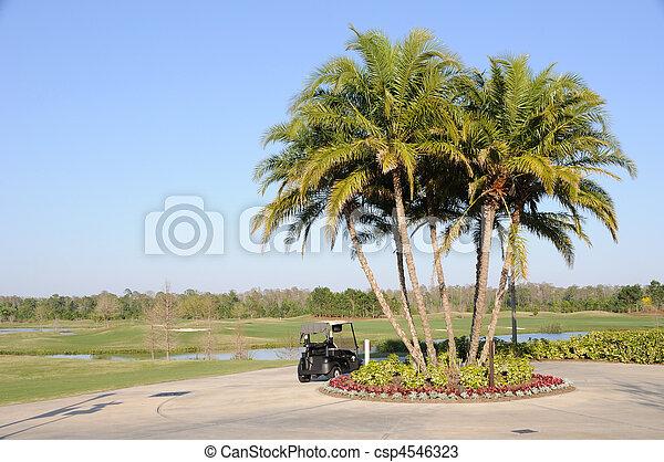 Golf Cart, Palm Trees and Florida Hotel Resort  - csp4546323