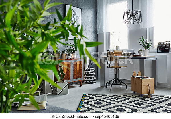 Functional studio flat with plants and desk