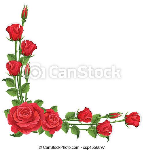 Roses - csp4556897