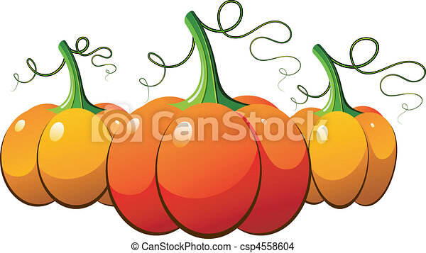 Three orange pumpkins over white - csp4558604