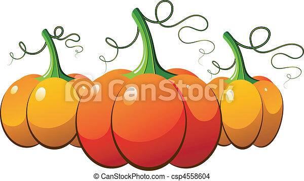 Three orange pumpkins over white - csp4558604