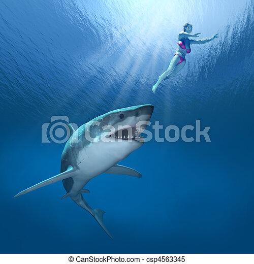 Shark Attack! - csp4563345