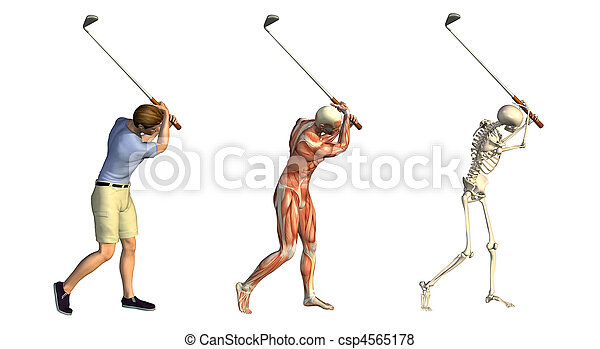 Anatomical Overlays: Golf Swing - csp4565178