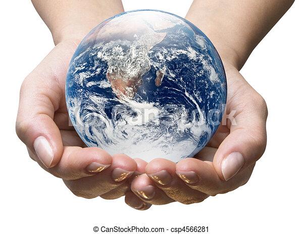Ecology world - csp4566281
