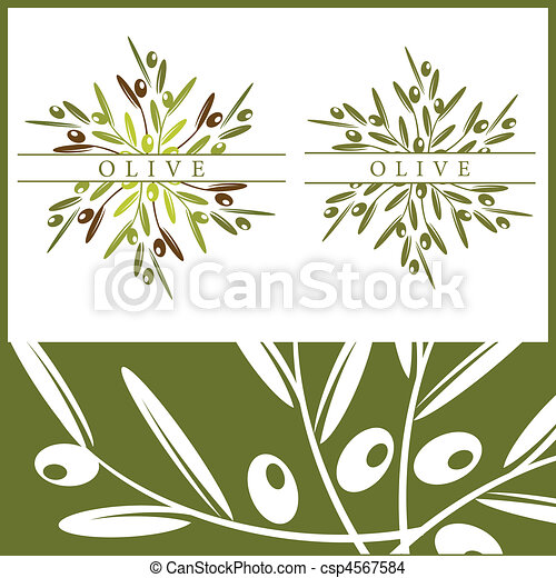 Olive pattern and elements - csp4567584