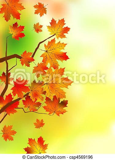 Autumn leaves, very shallow focus. - csp4569196