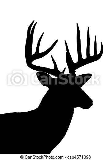 whitetail deer head silhouette isolated on white - csp4571098