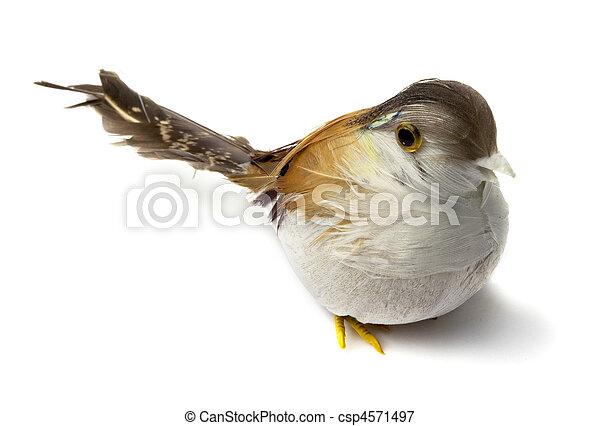image de plume oiseaux artificiel artificial plume oiseaux csp4571497 recherchez des. Black Bedroom Furniture Sets. Home Design Ideas