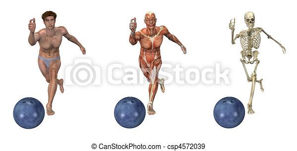 Anatomical Overlays - Bowling - csp4572039