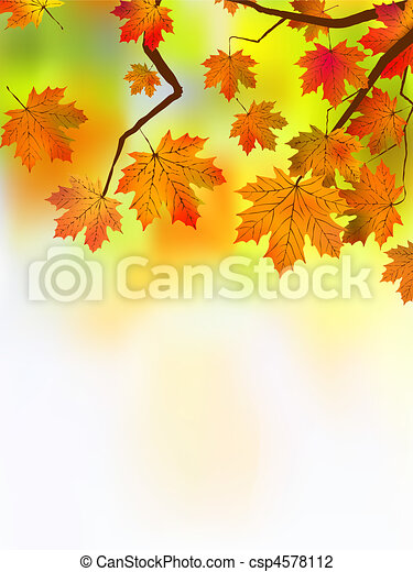 Autumn leaves, very shallow focus. - csp4578112