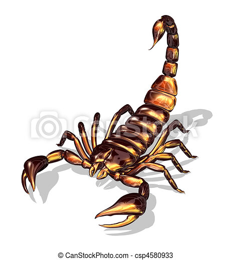 Drawings of Glossy Scorpion - 3D render of a scorpion with a glossy ...: www.canstockphoto.com/glossy-scorpion-4580933.html