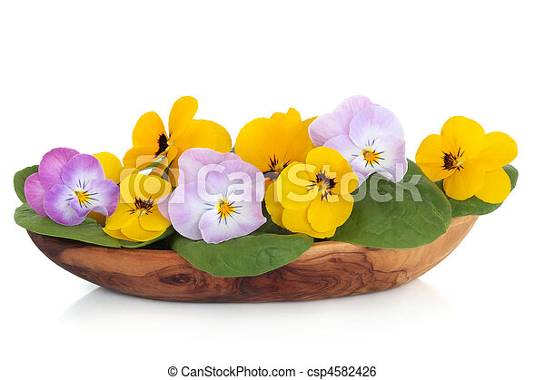stock bild von blume viola salat viola blumen mit spinat bl tter csp4582426 suchen. Black Bedroom Furniture Sets. Home Design Ideas