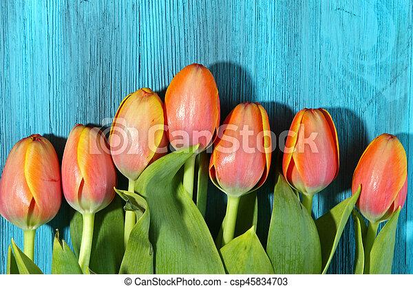 A bunch of orange Tulips - csp45834703