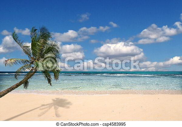 Paradise Beach With Nobody Around  - csp4583995