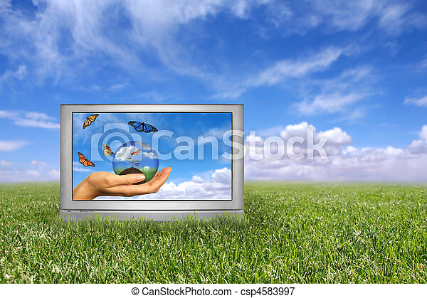 Beautiful Field of Green Grass and Blue Cloudy Sky Earth Concept. Front of Grass is in Focus With Intentional Extreme Depth of Field - csp4583997