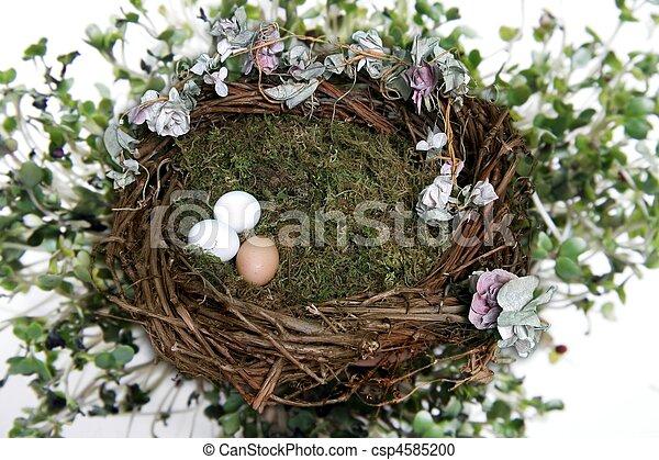 Nest Fantasy Photo Background for Digital Manipulation - csp4585200