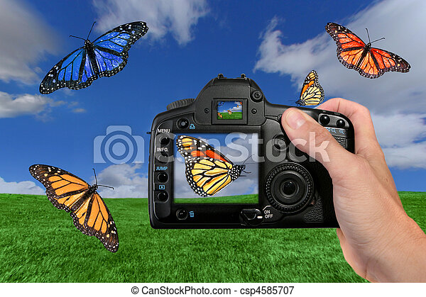 Photographer Shooting Butterflies in the Air - csp4585707