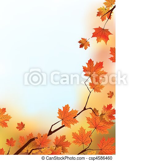Maple Tree Leaves against blue sky. - csp4586460