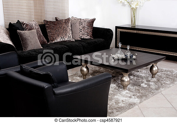 Contemporary sofa in modern living room - csp4587921