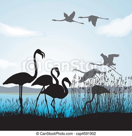 Children fed birds - csp4591902