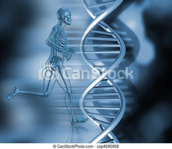 medical skeleton in running pose - csp4595958