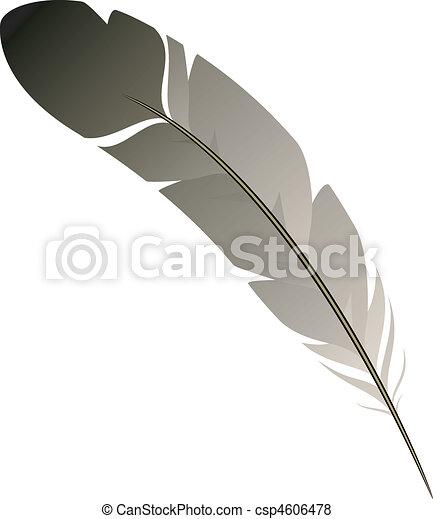 Feather - csp4606478