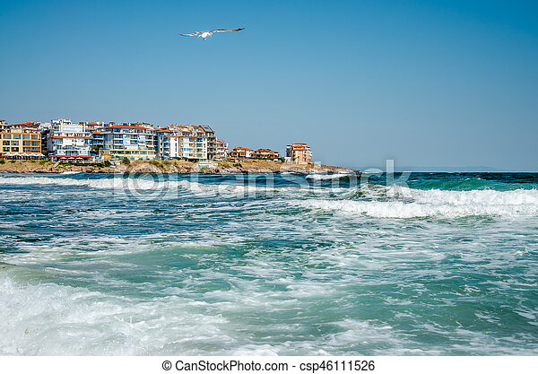 seaview with waves and seagull - csp46111526