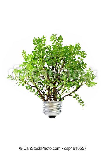 Green energy - csp4616557