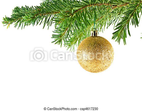 immergrün, baum, Verzierung, Freigestellt, Zweig, hängender, Feiertag, Weihnachten - csp4617230