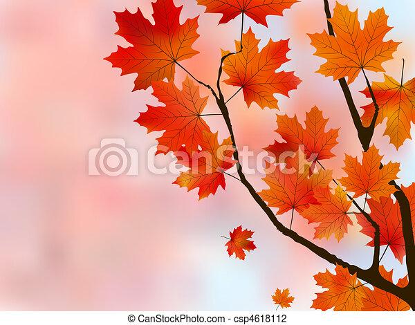 Orange light leaves of maple, shallow focus. - csp4618112