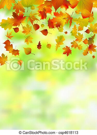 Autumn leaves, very shallow focus. - csp4618113