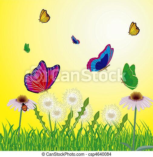borboletas, voando, prado, ano - csp4640084